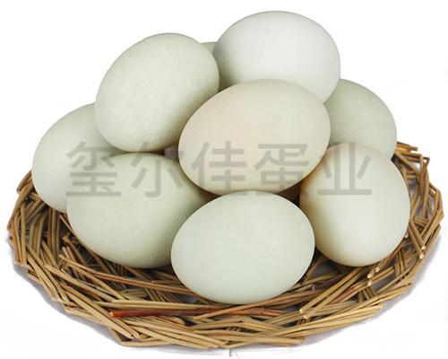 生态鸭蛋多少钱
